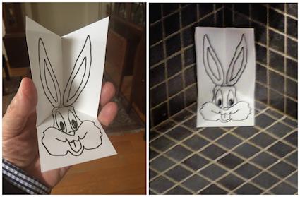 bunny 3D