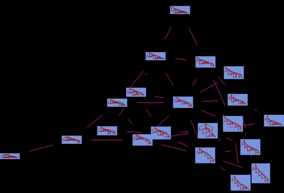 Branchial Graph