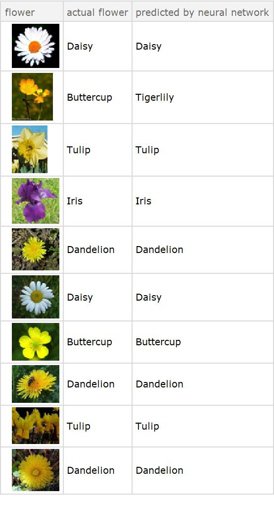 Comparison of actual and predicted flowers