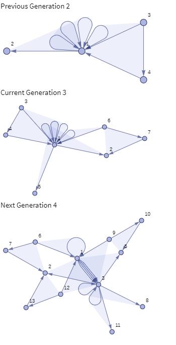 Generations 2 3 4