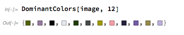 dominant-colors of the image