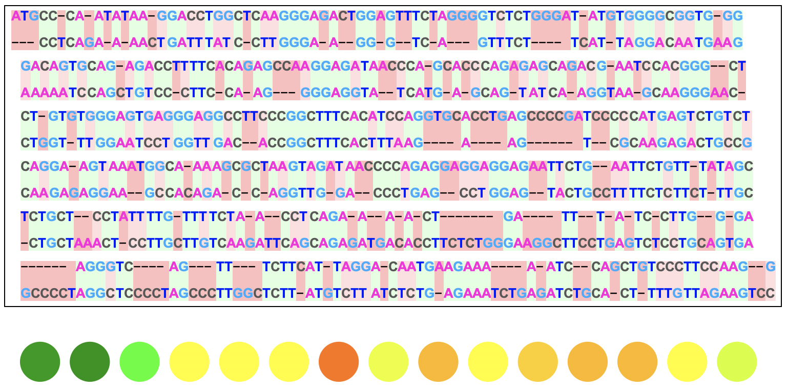 DNA sequence alignment visuals