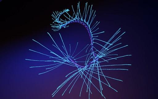 Wolfram Universe Model 4338
