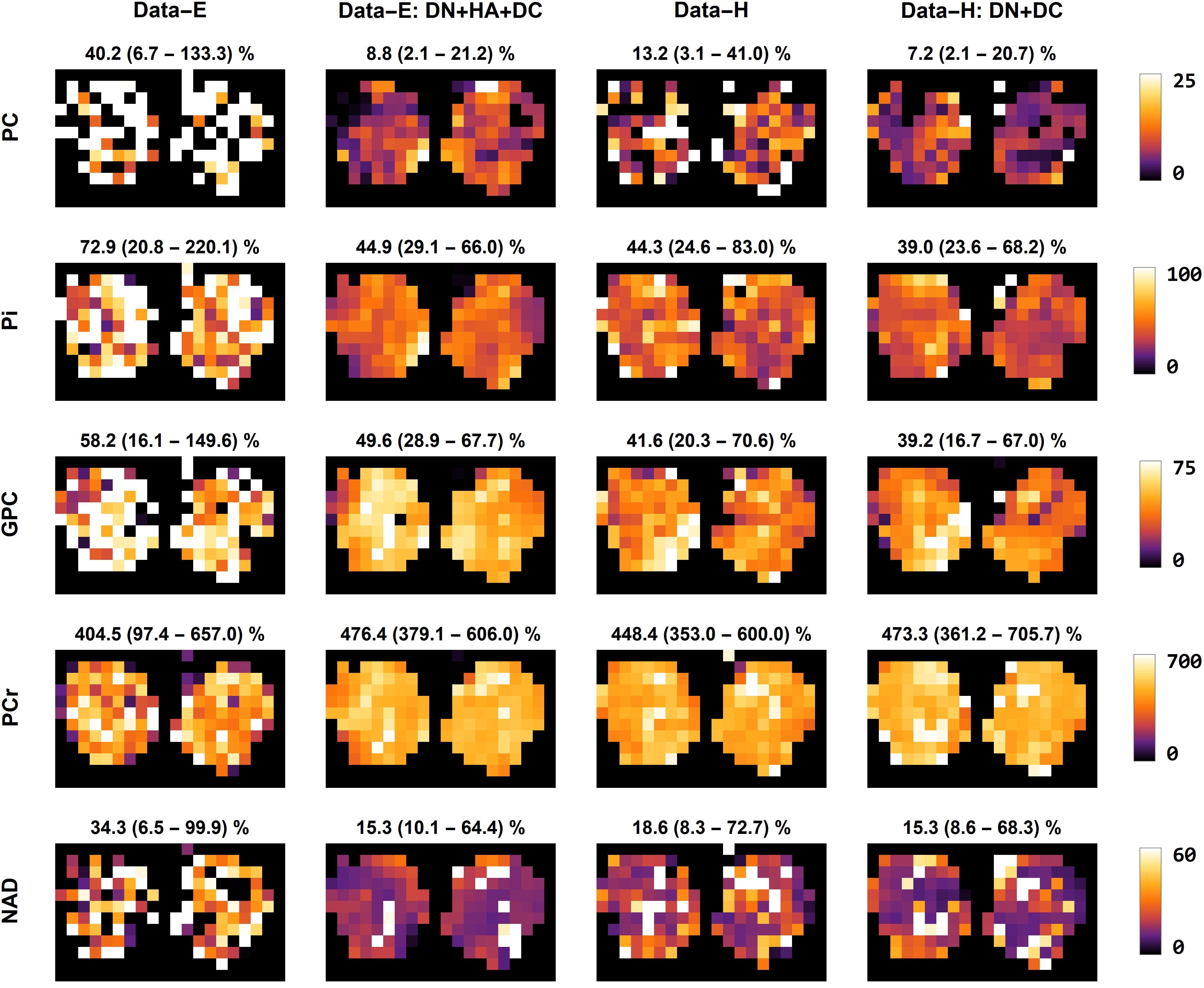Data fitting metabolite maps
