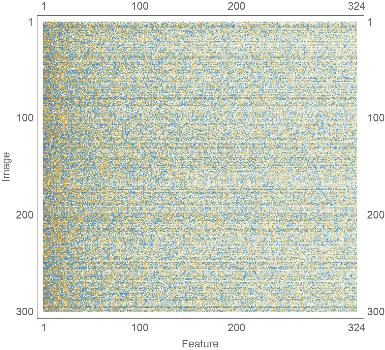 Feature--image matrix