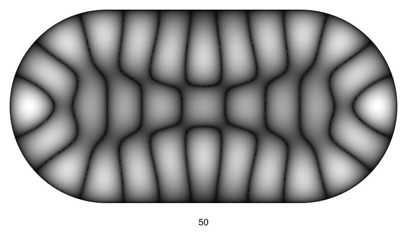50th eigenfunction