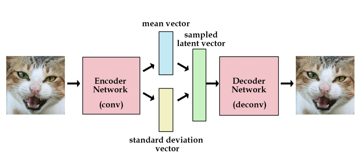 (The structure between encoder network and decoder network is the reparametrize layer. )