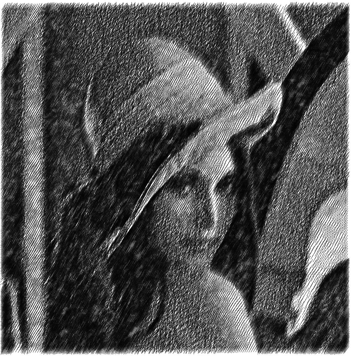 Lena sketch