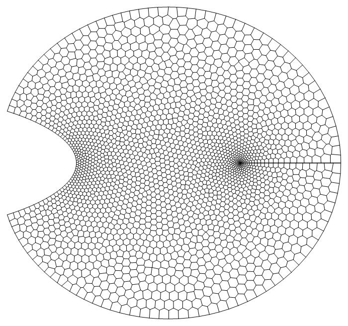 VoronoiMesh of the transPts