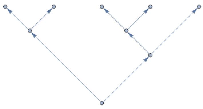 5-leaf graph.