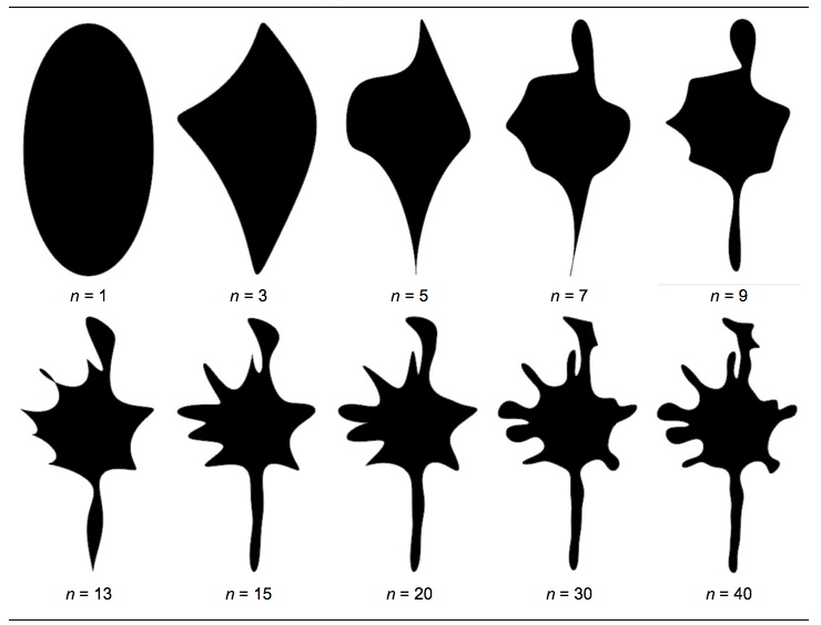evolution of ellipses with higher harmonics fitting the silhouette